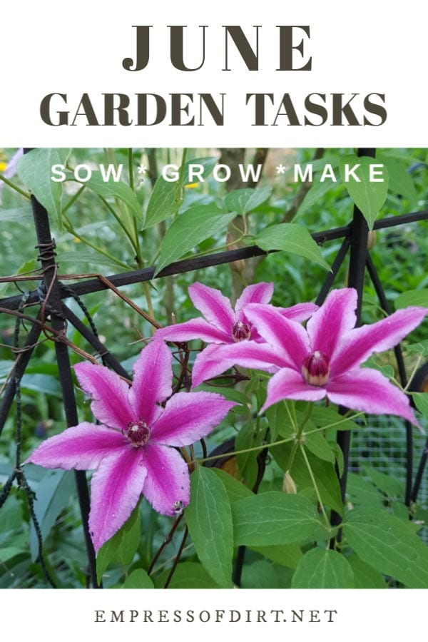 June Garden Tasks | What to Make and Grow