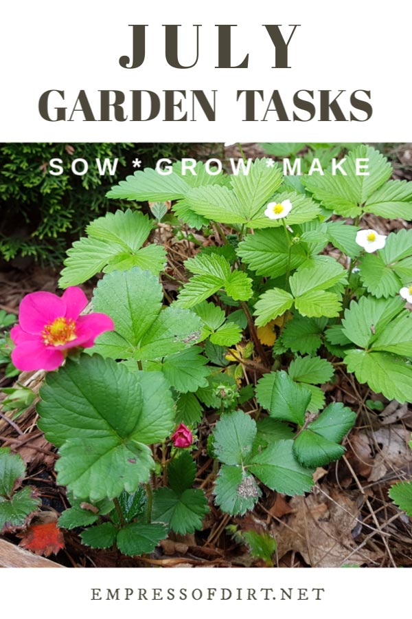 July Garden Tasks (What to Make and Grow)