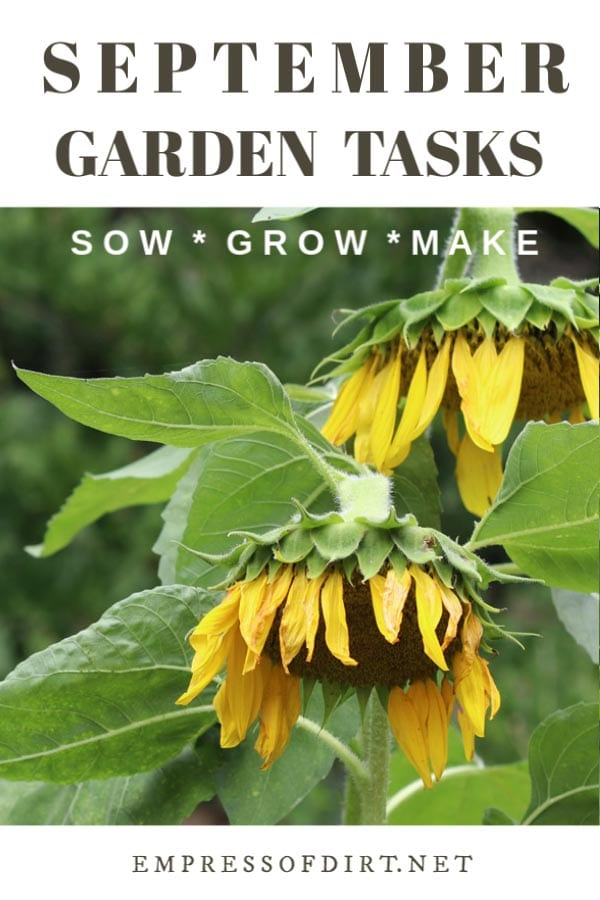 September Garden Tasks (What to Make and Grow)