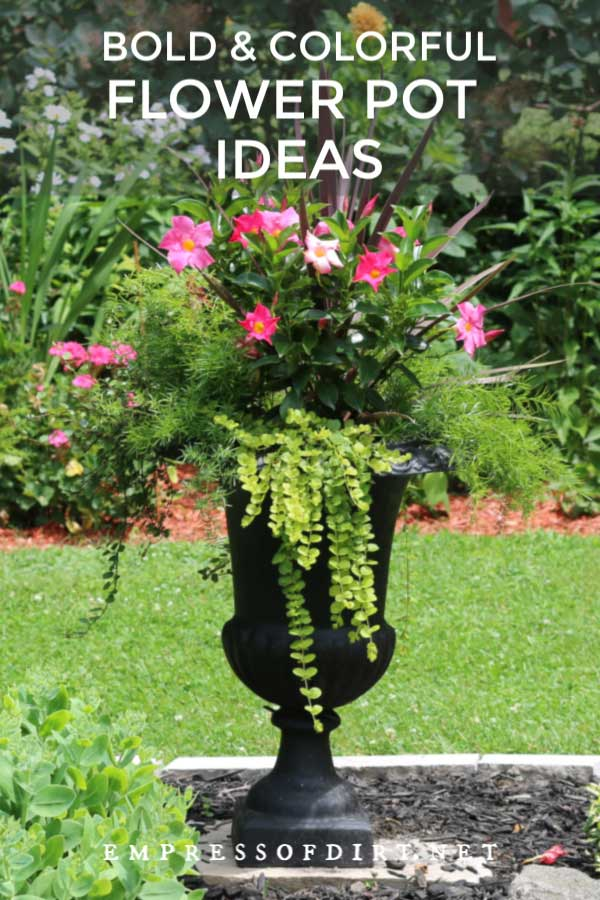 Large black metal garden urn with pink flowers and trailing vines.