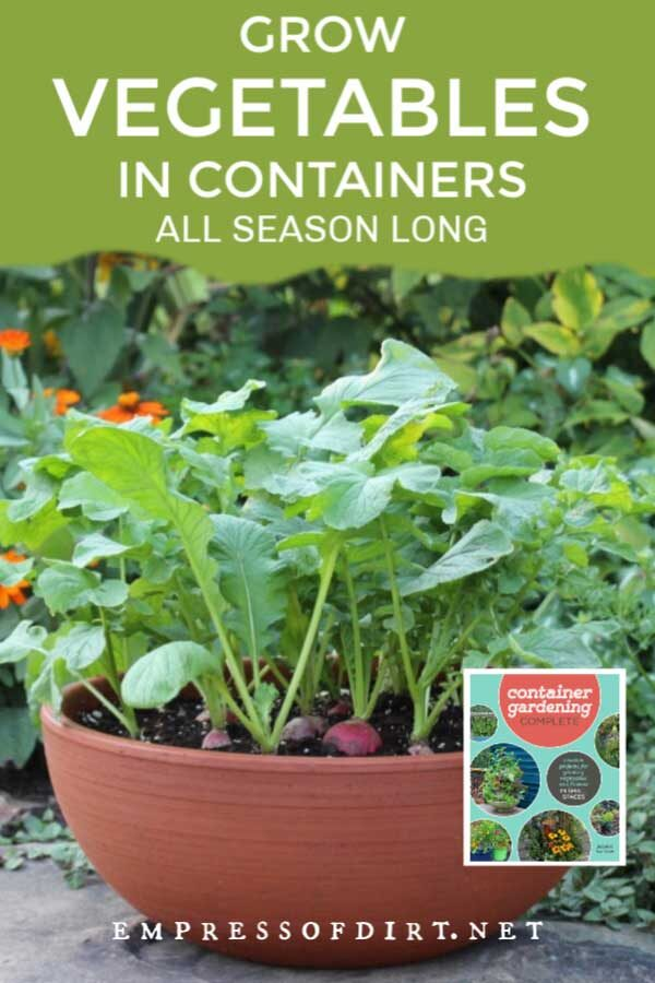 10 Top Vegetables to Grow in Containers (Spring to Fall)