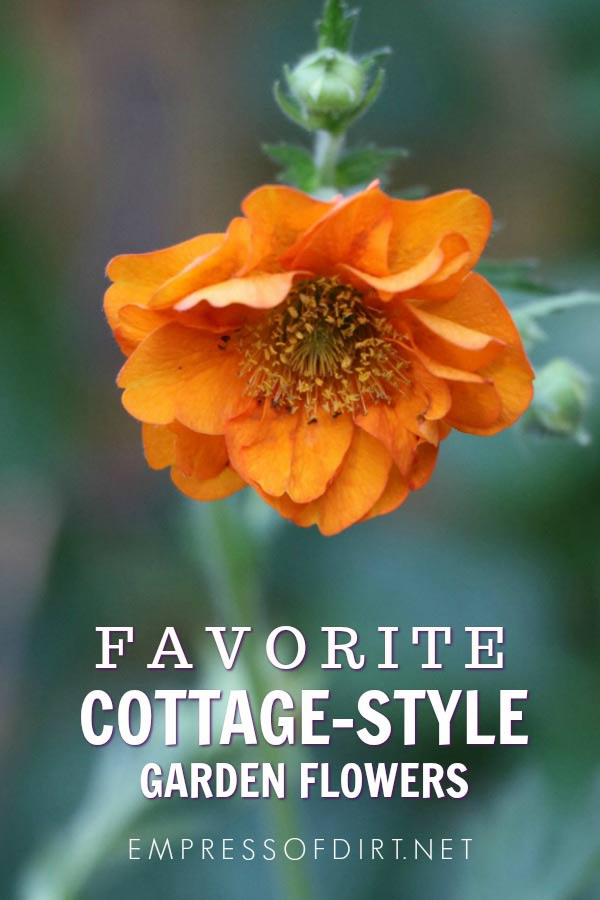 40 Flowering Plants for a Cottage-Style Garden
