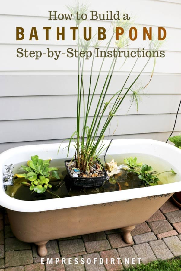 How to make a bathtub fish pond empress of dirt for Diy fish pond