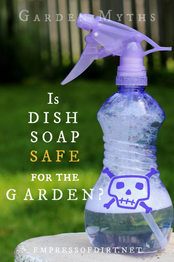 Is dish soap safe for the garden? See what it does and decide.