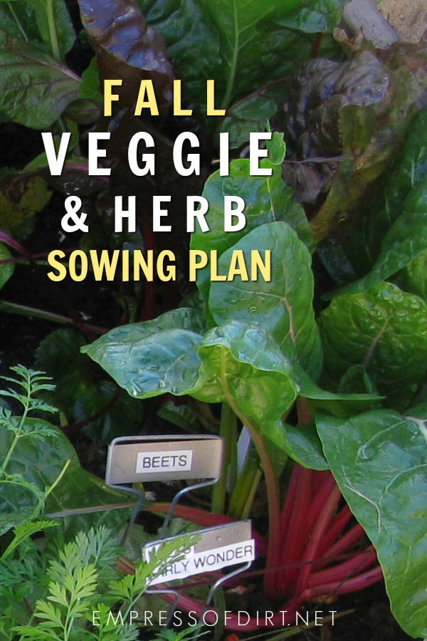A sowing plan for growing veggies and herbs in the fall garden.