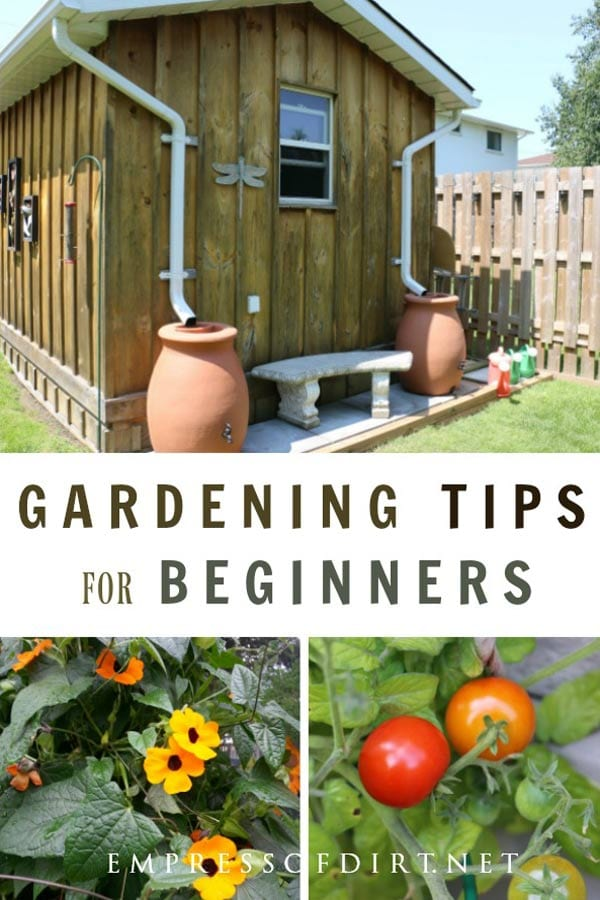 Helpful garden tips to encourage beginners to grow what they love and create a wonderful outdoor space.