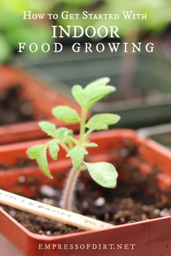 Get Started with Indoor Vegetable Gardening