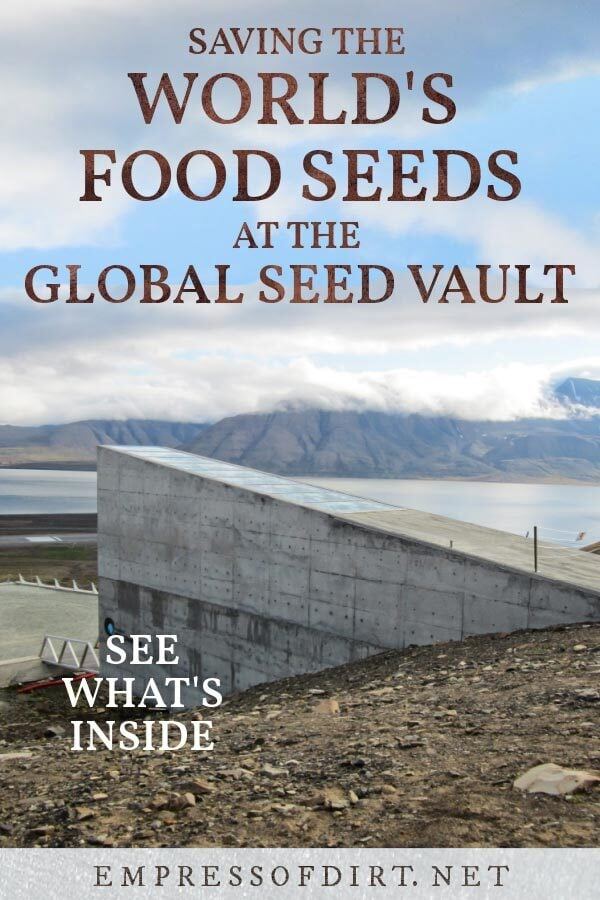 The Global Seed Vault in Norway where millions of food seeds are stored.