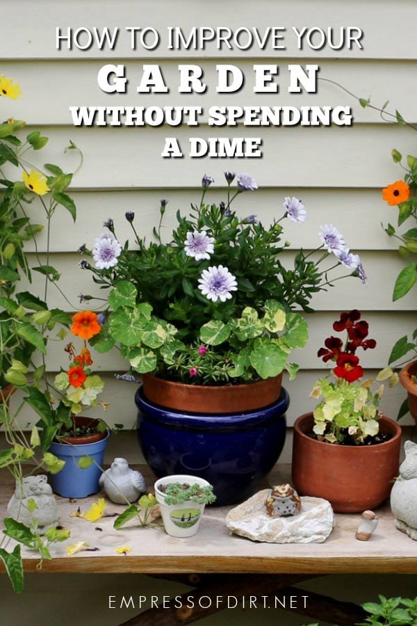How to Improve Your Garden Instantly Without Spending a Dime