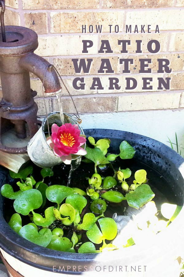 Make a Container Water Garden for Your Patio