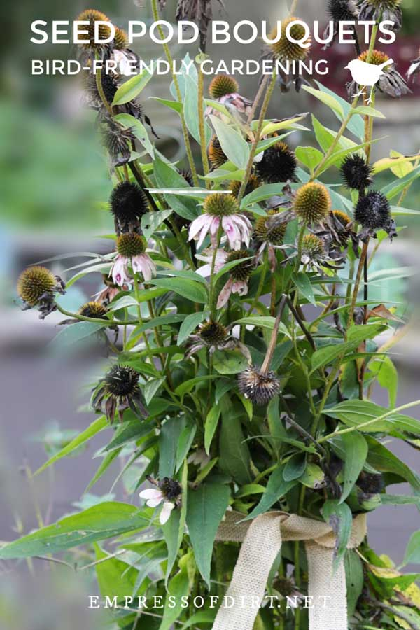 Seed pod bouquet for winter birds in the garden.