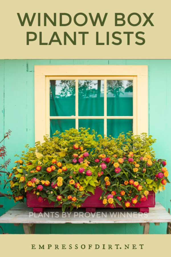 Colorful garden window box with orange, yellow, pink, and green flowers by Proven Winners.