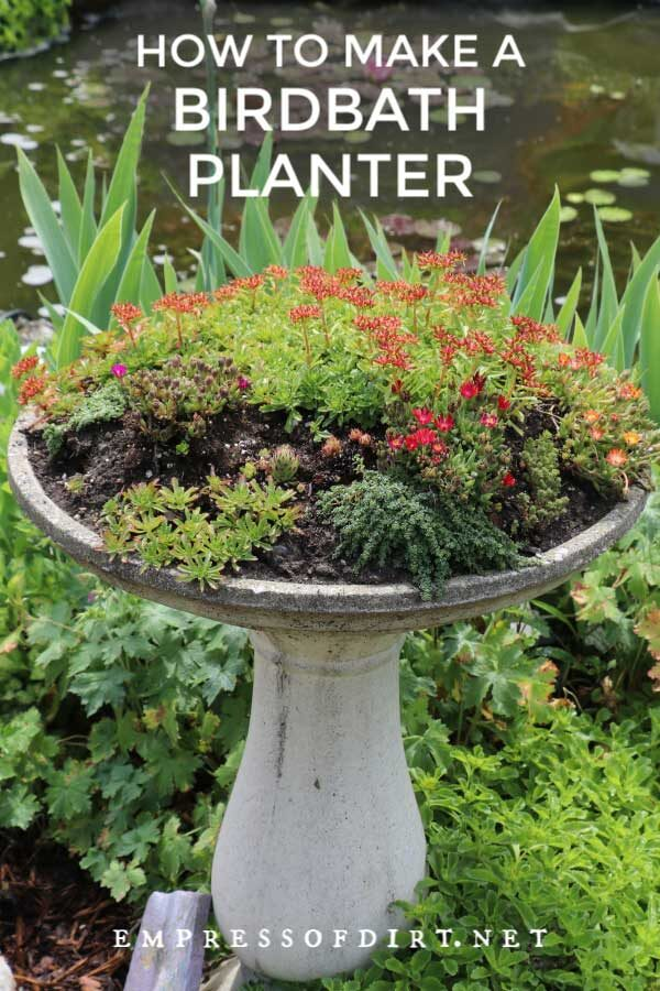 Create a Garden Art Birdbath Planter