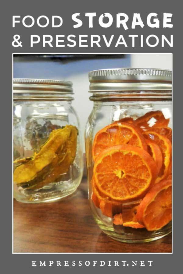 Cold Storage 101: Food Preservation Tips