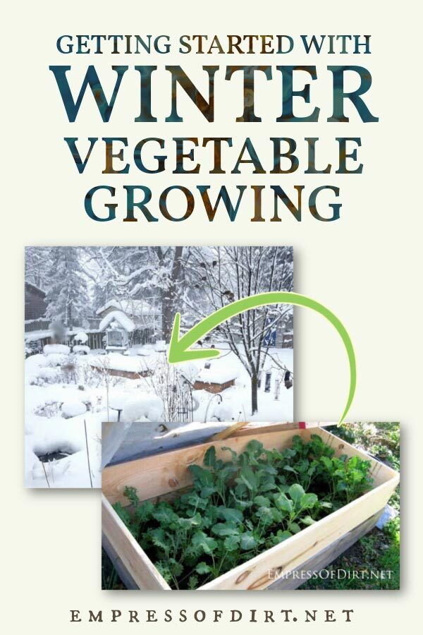 Outdoor vegetable garden in winter.