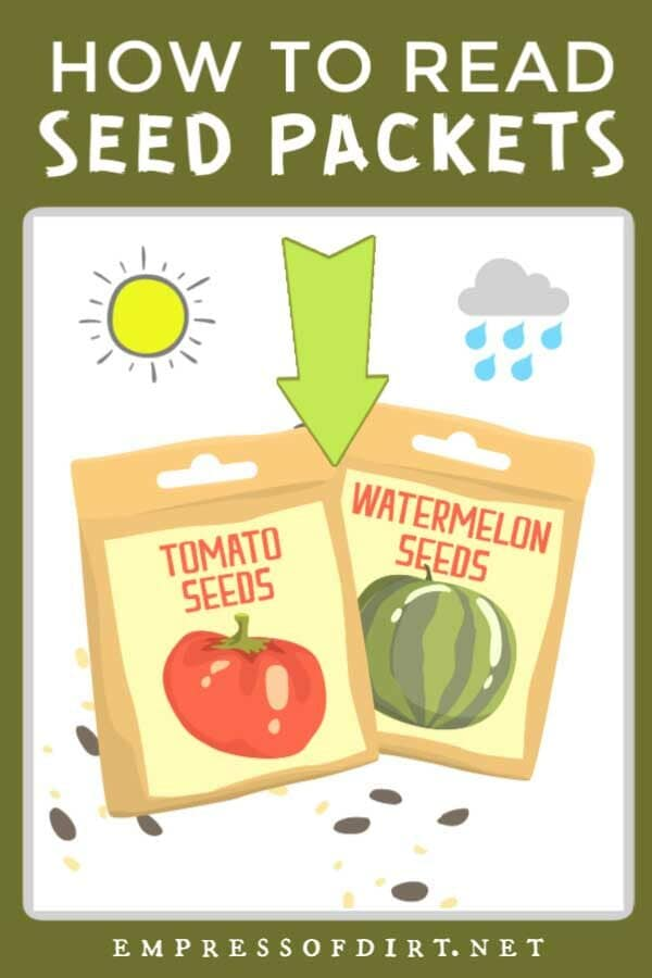 How To Read Seed Packets (Tips for Beginners)
