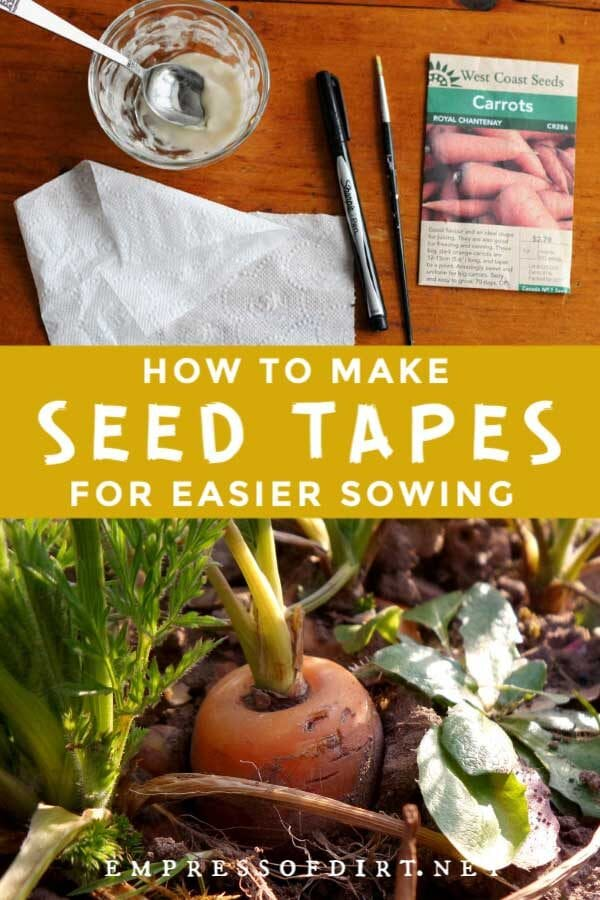 How to Make Seed Tapes for Easier Sowing