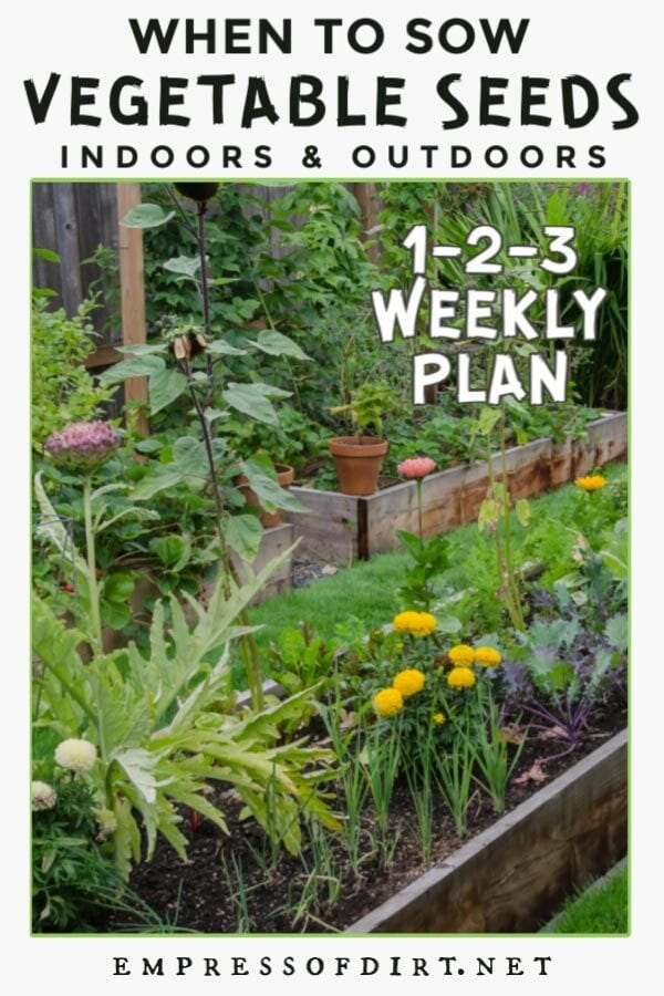 Vegetable seed sowing plan for indoor and outdoor seed starting.