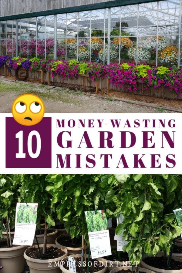 Garden mistakes that waste money.