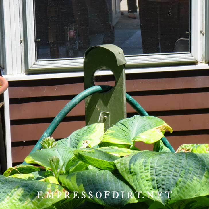 Wooden stand used to prevent garden hose from crushing garden plants.