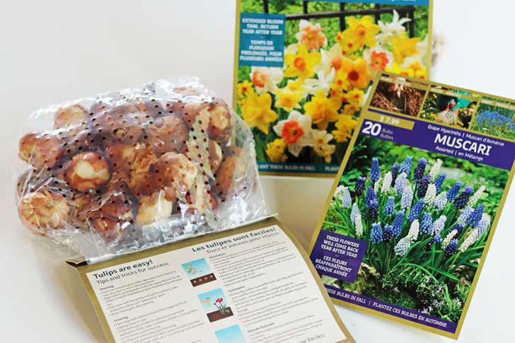 Packages of bulbs with their planting instructions.
