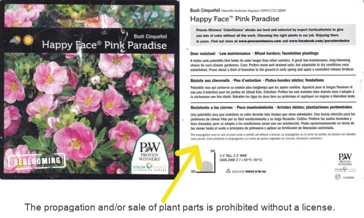Plant tag with patent restricting propagation without a license.