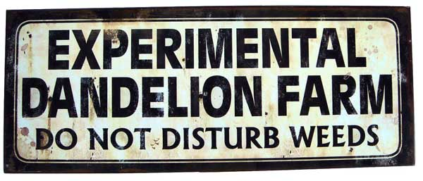 Garden sign saying experimental dandelion farm: do not disturb weeds.