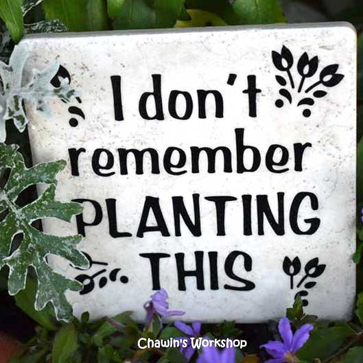 I don't remember planting this by Chawin's Workshop Etsy