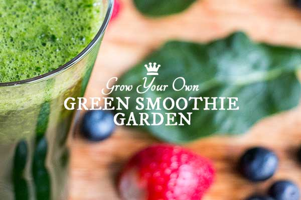 Grow a Healthy Green Smoothie Garden