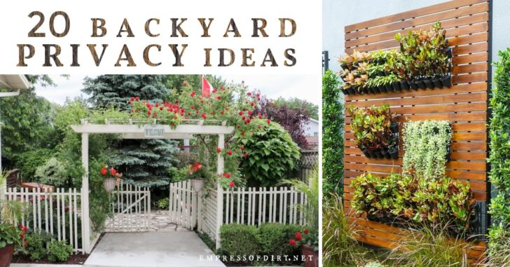 Privacy fence and garden walls with plants.