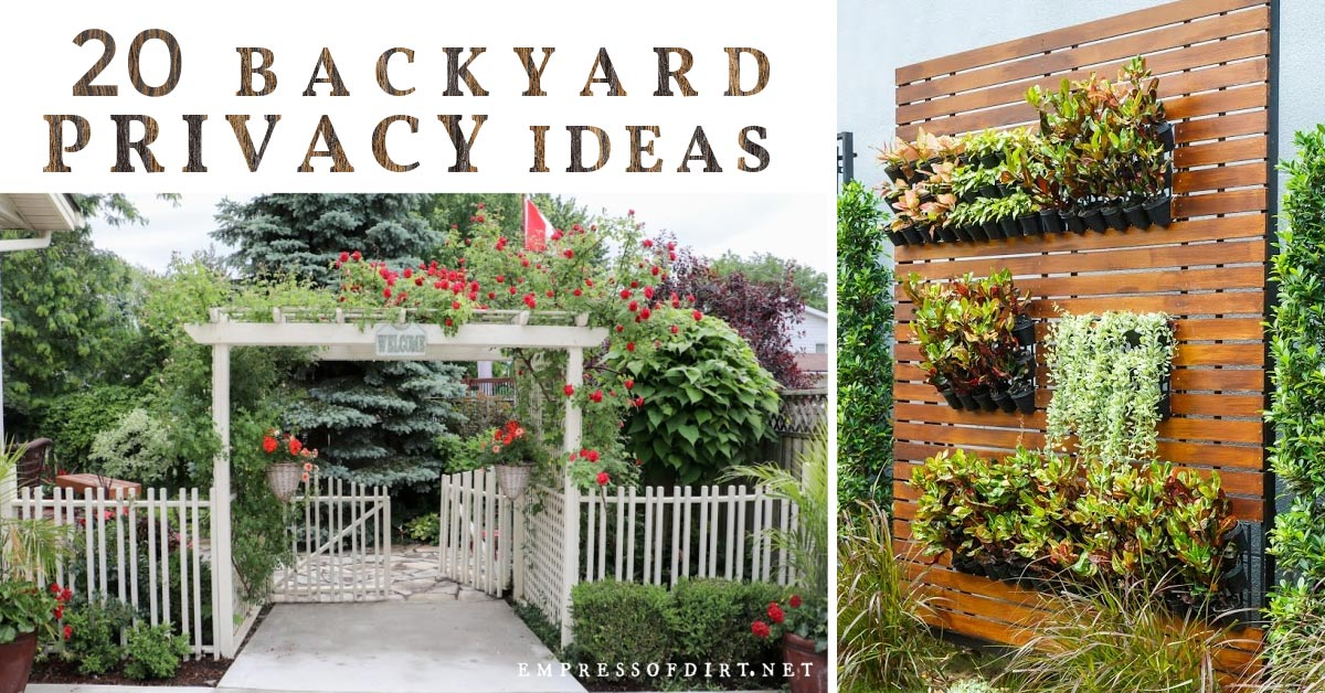 20 Ideas For Better Backyard Privacy Empress Of Dirt