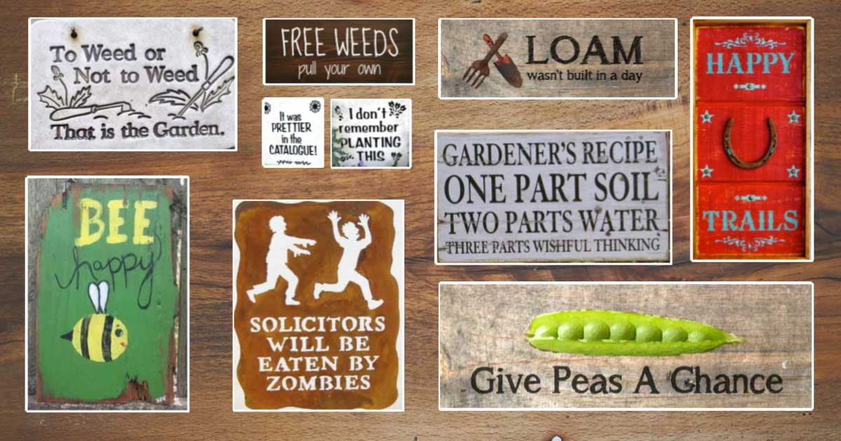 40 Funny Cute Sarcastic And Sentimental Garden Signs Empress Of Dirt