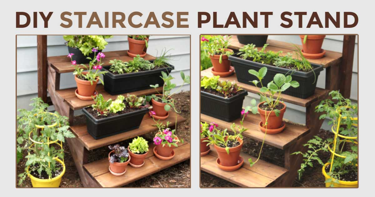 How To Build A Simple Staircase Plant Stand Empress Of Dirt