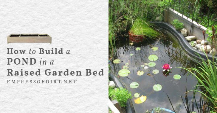 Small garden pond built in a raised garden bed.