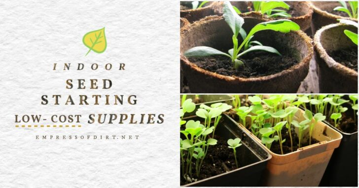 Low-cost seed starting supplies including reused pots.