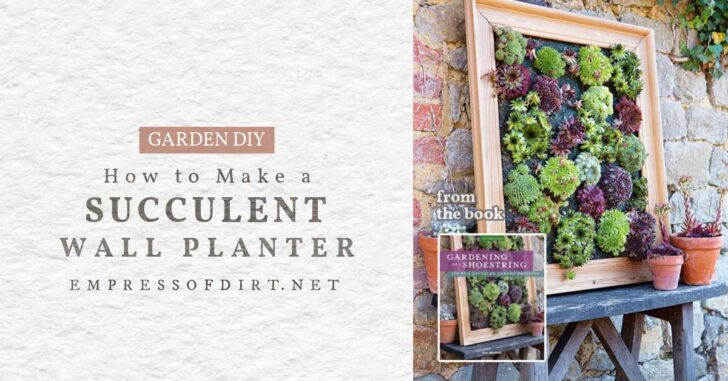 Succulent wall planter from the book, Gardening on a Shoestring.