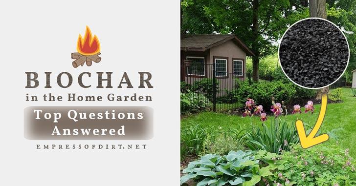 Biochar and a backyard flower garden.