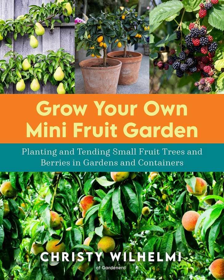 Grow Your Own Mini Fruit Garden book