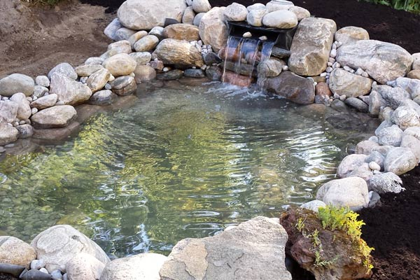 - How To Build A Backyard Garden Pond Empress Of Dirt