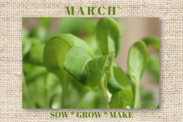 March garden tasks by Empress of Dirt
