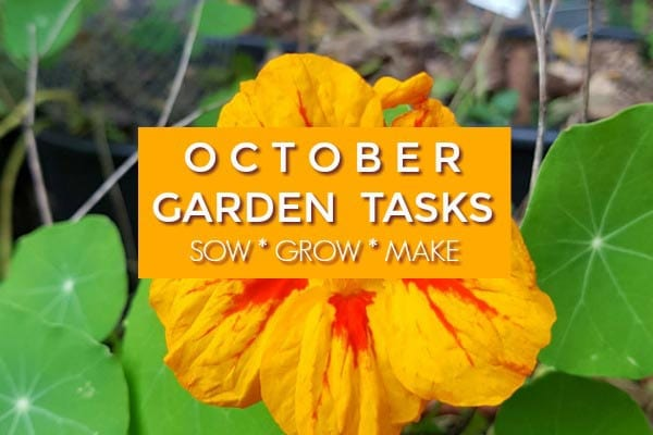 October Garden Tasks | What to Make and Grow