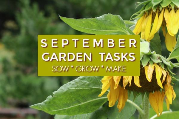September Garden Tasks | What to Make and Grow
