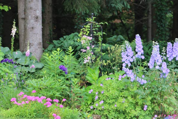 Plants that tolerate shade and ideas to brighten up a shady garden space.
