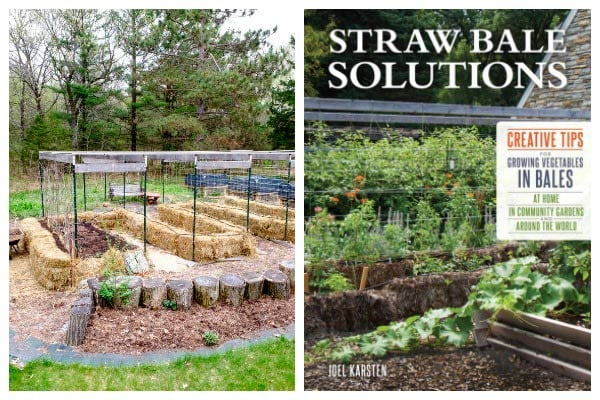 How to get started with straw bale gardening for beginners who want to grow vegetables and other annuals.