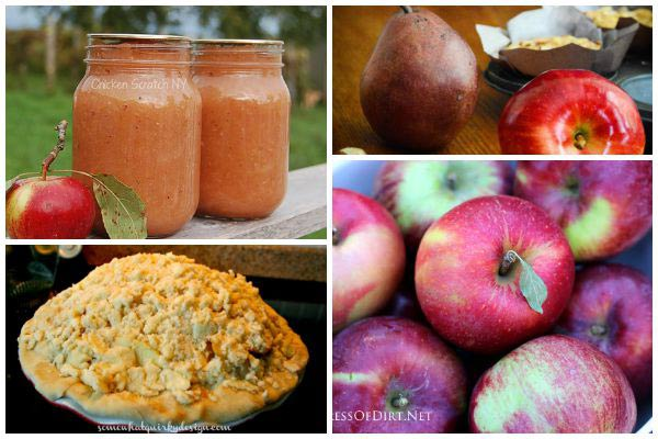 Best Apple Recipes From Salad To Pies