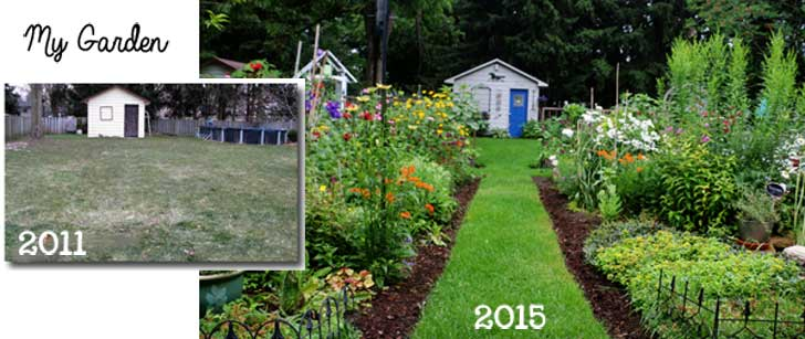 Before and after of Empress of Dirt backyard garden, with and without a flower garden.