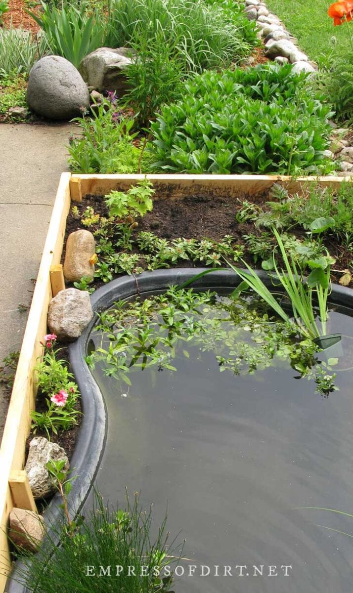 Completed pond in a raised garden bed.