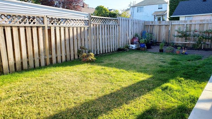 Garden before adding raised beds.