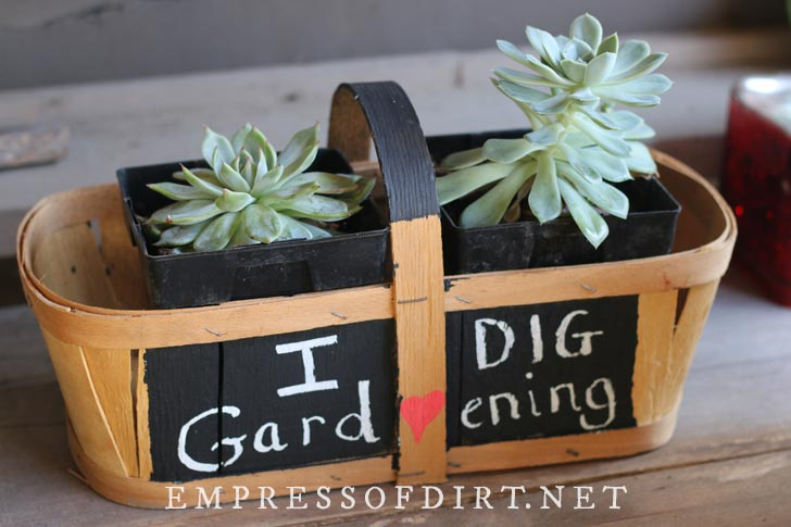 Fruit basket painted with chalkboard paint and planted with succulents.
