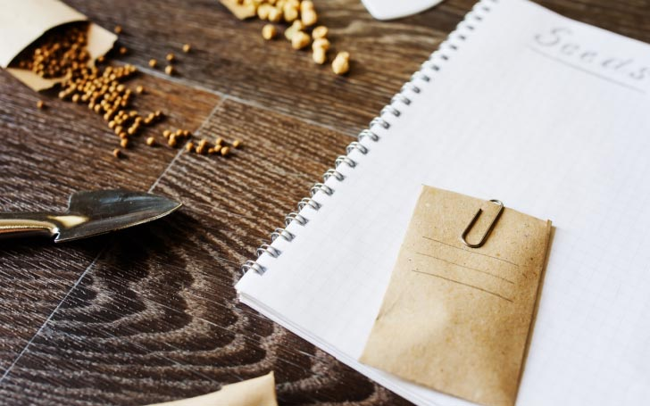 A notebook, seed packet, and seeds on a desk.